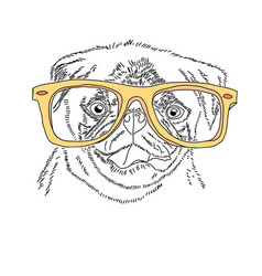 dog with yellow glasses cute pug portrait vector image
