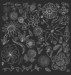 floral doodle elements for design hand-drawn vector image