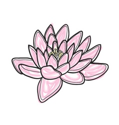 flower sketch vector image