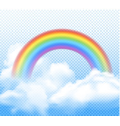 realistic rainbow composition vector image