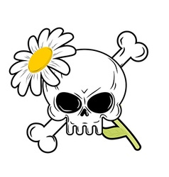 Skull and flower symbol of death and symbol of vector image
