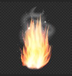 transparent realistic fire flame bonfire vector image