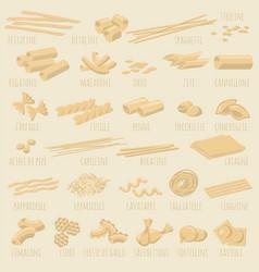 italian pasta types vector image