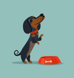 little cute dog character mascot want eat vector image