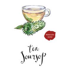 glass cup of soursop ceilona tea vector image vector image