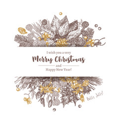 banner made with christmas sketch plants vector image