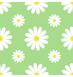 Green background seamless pattern with chamomiles vector image vector image