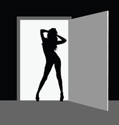 hot girl fron the door vector image