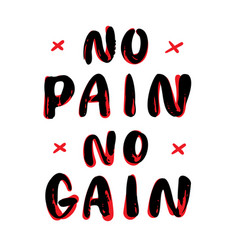 no pain no gain hand lettering vector image