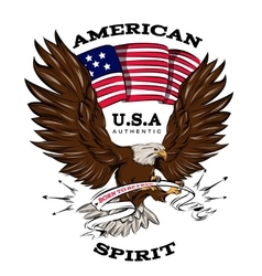 Spirit Of USA Emblem vector image