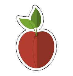cartoon apricot fruit nutrition icon vector image