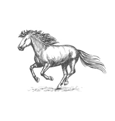 White strong horse galloping on sport races vector image