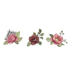 flower design elements spring decorative bouquet vector image