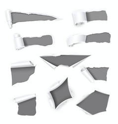 grey holes realistic set in white paper with torn vector image