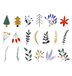 set flowers and leaves christmas plants vector image