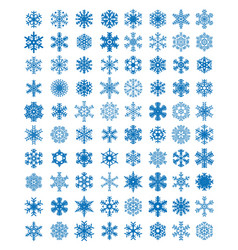 different blue snowflakes vector image vector image