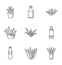 aloe juice icons set outline style vector image