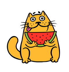 Cute fat cat eats watermelon cat isolated vector