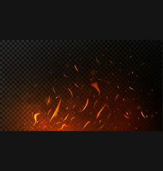 fire sparks on dark transparent background flying vector image