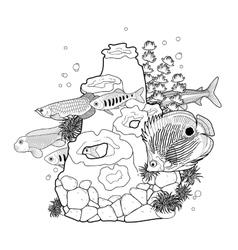 Graphic aquarium fish with coral reef vector image