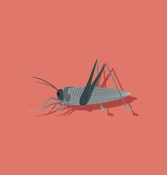Paper sticker on background of grasshopper vector