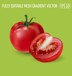 Red tomato with a half tomato on a green vector