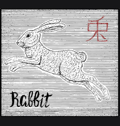Engraved of zodiac symbol with rabbit vector