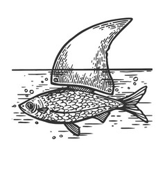 Fish with shark fin engraving vector