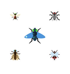 Flat icon housefly set of gnat dung mosquito and vector