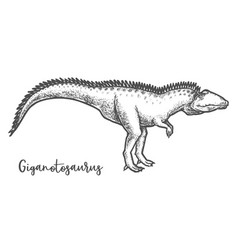 Giganotosaurus dino sketching sketch dinosaur vector