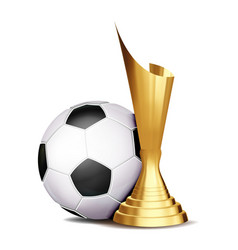 soccer game award football ball golden vector image