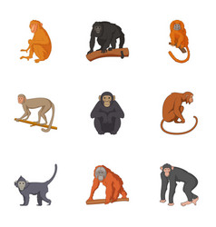 Species of chimpanzee icons set cartoon style vector