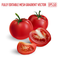 Whole and sliced red tomatoes on a white vector