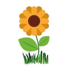white background with abstract sunflower plant in vector image