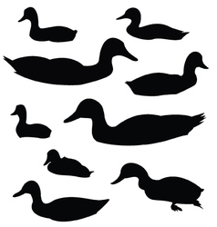 Duck Silhouette Animal Clip Art vector image