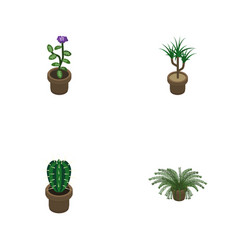 Isometric flower set of peyote plant flower and vector