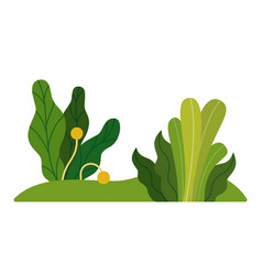 park green plants icon flat isolated vector image