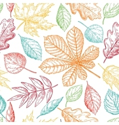 Seamless pattern with colorful autumn vector image
