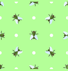 seamless pattern with flies and circles vector image