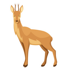 Stylized of deer woodland forest vector