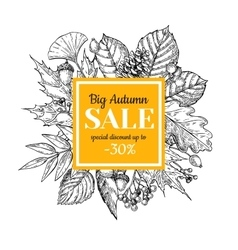 Autumn sale banner with leaves and berry vector image vector image