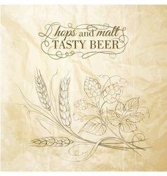 Golden wheat and hop on sepia vector image