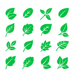 Green leaves icons leaf symbols vector