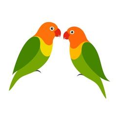 Parrot Lovebird vector