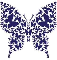 Stencil symmetry outline butterfly from dark blue vector