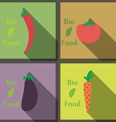 Flat design modern healthy and biological food vector