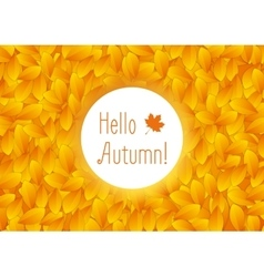 Orange autumn leaves background vector