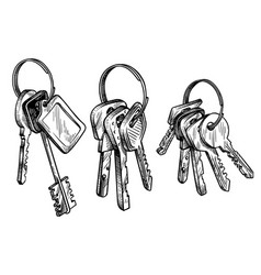 sketch hand drawn bunch keys on white vector image