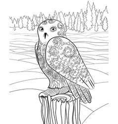 Snowy owl in the zentangle style vector