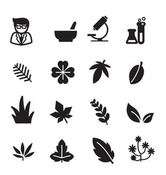 silhouette herb icons set vector image